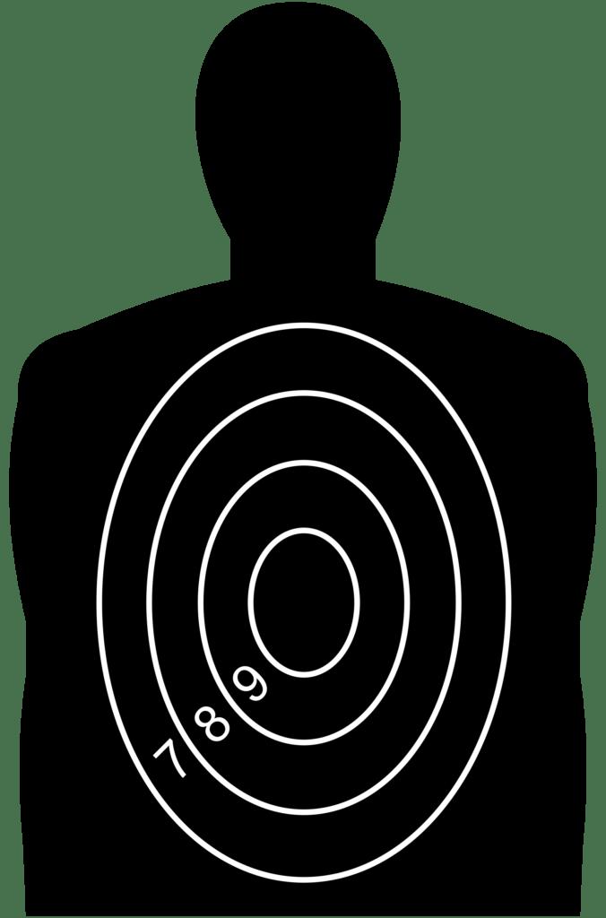 Мишени для стрельбы: для пневматической винтовки и пистолета, спортивные и силуэтные мишени