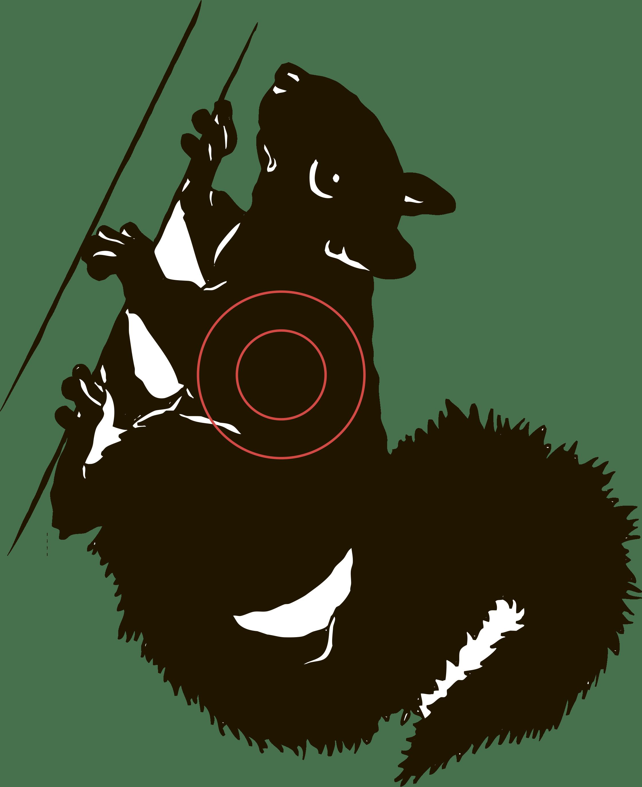Мишень №5